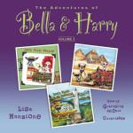 cover-audio-manzione-bella and harry v2