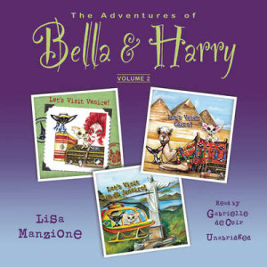 cover-audio-manzione-bella and harry v2