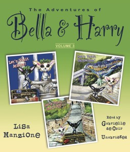 cover-audio-manzione-bella and harry v3